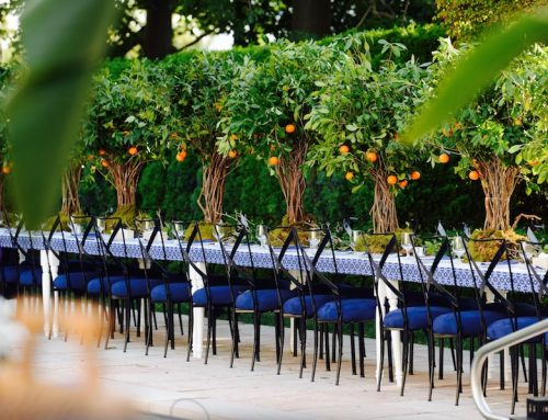 Orange Grove Dinner Party Featured on PartySlate