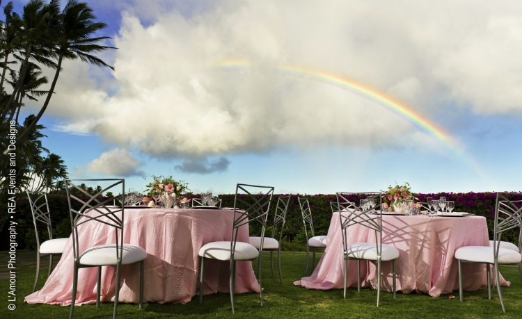 Intimate Events - 2011 - Chameleons in Heaven? (Hawaii) - REA Events and Design (L'Amour Photography)